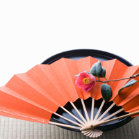 Chinese Fan. Shop in Ukrainian Marriage Agency.