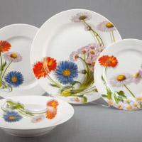 Dish set service. Shop in Ukrainian Marriage Agency.