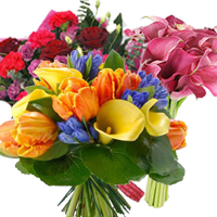 3 bouquets for your lady with 20% discount. Shop in Ukrainian Marriage Agency.