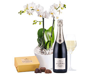 Orchid, chocolate box and bottle of champagne. Shop in Ukrainian Marriage Agency.