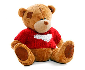 Bear in a warm pullover. Shop in Ukrainian Marriage Agency.