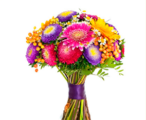 Autumn bunch of asters. Shop in Ukrainian Marriage Agency.